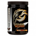 RECUPERADOR MUSCULAR PSN POWER RECOVERY 500 GR