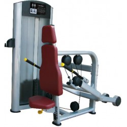 MÁQUINA PRESS DE TRICEPS PLATINUM RS-5H 39