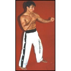PANTALONES FULL CONTACT / KICK BOXING - RASO