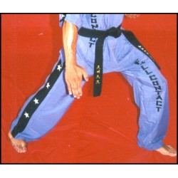 PANTALONES FULL CONTACT / KICK BOXING - TACTEL