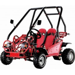 MINI BUGGY DE GASOLINA SP-MB 410