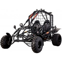 BUGGY CAR 250 CC