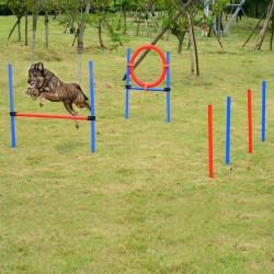 Set Agility Entrenamiento Perros Agilidad Salto Polo...