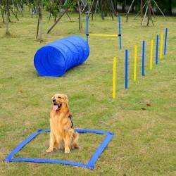 Set Entrenamiento Agility Agilidad Perros Salto Tune...
