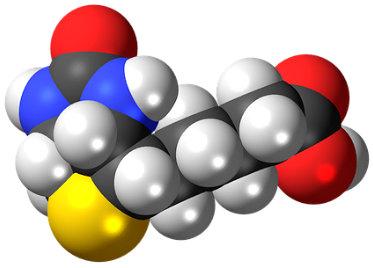Biotina, conoce los beneficios de este suplemento