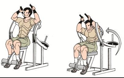 ejercicio encogimientos abdominales en máquina