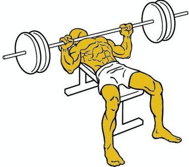 ejercicios para ganar volumen muscular