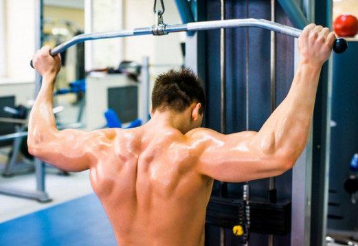 espalda-musculacion
