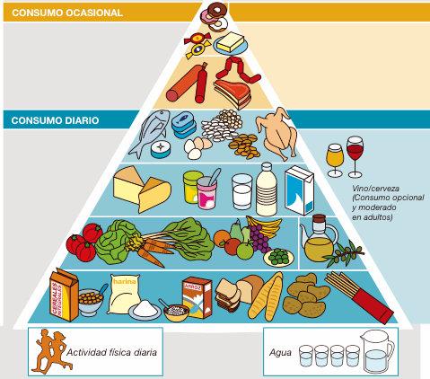 ingesta de proteinas en la pirámide nutricional