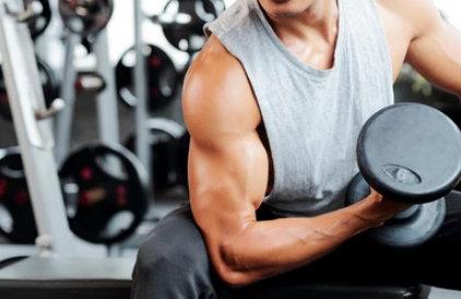 complementos proteicos para aumentar los musculos