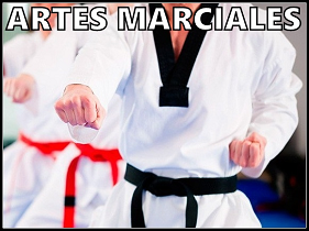 tienda-artes-marciales-online