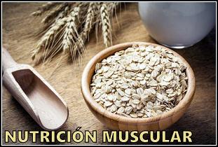 tienda-nutricion-muscular-alimentacion-deportiva